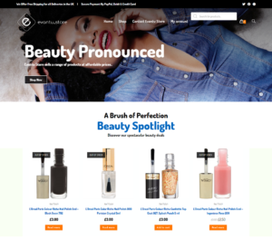 Read more about the article evantu store